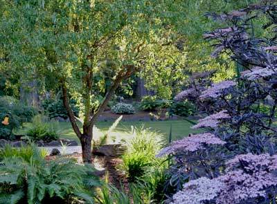 Deep Woods gardens